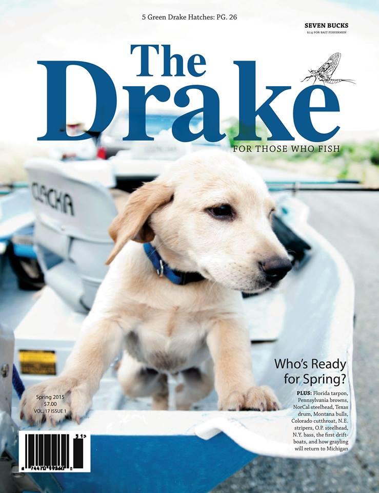 Drake Spring 2015